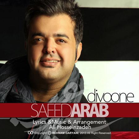 % دانلود آهنگ جدید سعید عرب به نام دیوونه
